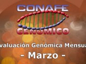 Conafe - Genómico