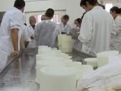 Curso de quesos del IRTA