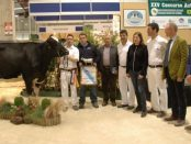 Concurso de Galicia