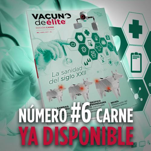 Promo_revista_6carne1.jpg