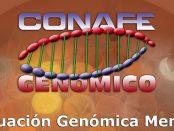 conafe-genomico