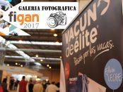 figan-2017-vde-galeria