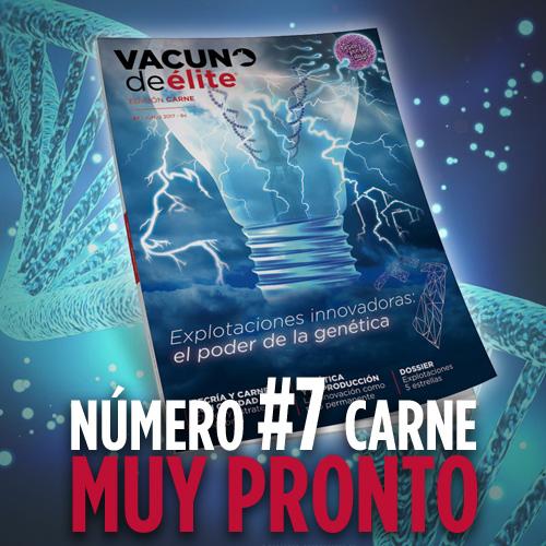 Promo_revista_7carne1.jpg