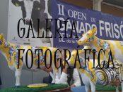 open-galeria-fotos