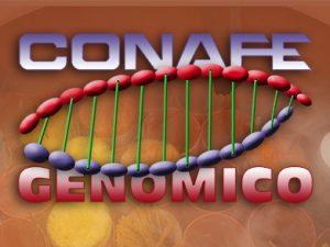 genomico