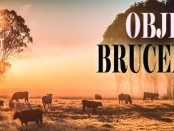 brucelosis1