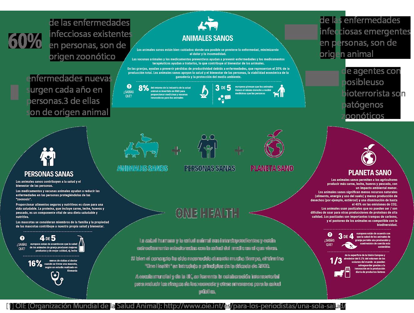 infografia-zoonosis