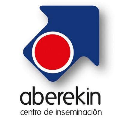 aberekin_logo
