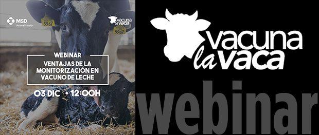 El 3 De Diciembre Webinar Msd De La Serie Rumiando Los Jueves Ventajas De La Monitorización En Vacuno De Leche Vacuno De élite