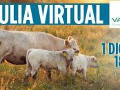 webinar_vacusos_destacada