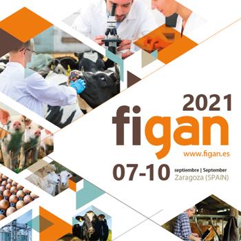 figan2021
